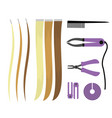 set of of icons of hair extensions vector image