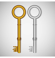 old gold and silver keys on gradient background vector image vector image