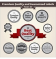 Premium Quality And Guaranteed Labels vector image