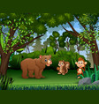 various animals in jungle vector image vector image