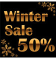 elegant gold winter lettering design with shiny vector image vector image