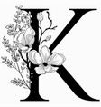 hand drawn floral k monogram and logo vector image vector image