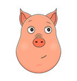 head of trusting pig in cartoon style kawaii vector image vector image