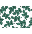 seamless pattern with green leaves on white vector image