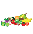 Collection of fruit vector image