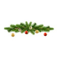 detailed decor fir branch ball vector image