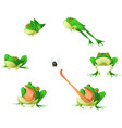 frog cartoon design element set vector image