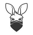 kangaroo head with anti smoke mask icon logo vector image vector image