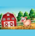 a pig at farm vector image vector image