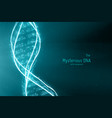 abstract dna double helix vector image vector image