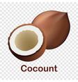 coconut icon realistic style vector image