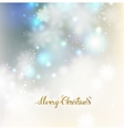Festive abstract elegant shine background with vector image vector image