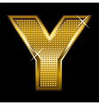 Golden font type letter Y vector image vector image
