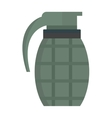 Hand grenade bomb explosion weapons vector image vector image