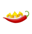 Hot Chili Pepper Pod Single Object vector image