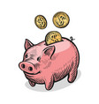 piggy bank and gold coins money bank finance vector image