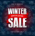winter sale badge label promo banner template vector image vector image
