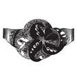 brooch diamonds set vintage engraving vector image