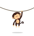 funny little monkey climbing vine vector image vector image
