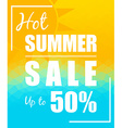 Hot Summer Sale with sun over triangular vector image vector image