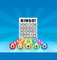 lottery bingo game balls with numbers and vector image vector image