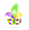 Mardi Gras traditional colors mask vector image vector image