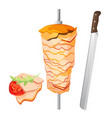 meat on skewer and some slices with tomato vector image vector image