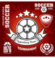 Emblems on the theme of soccer football icons and vector image vector image
