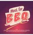 Meat for barbecue and grilling vector image vector image