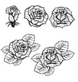 set of old school tattoo style roses isolated on vector image vector image