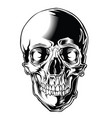 skull black 05 vector image vector image