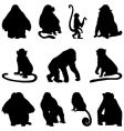 apes silhouettes set vector image