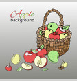 apple basket background banner vector image