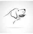 Labrador dog head on a white background pet