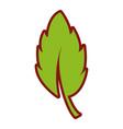 line color leaf plant nature flora design vector image vector image