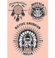 set of emblems on the theme of native American vector image