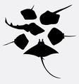 Stingray fish animal silhouette vector image