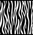 zebra seamless pattern vector image vector image