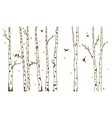 birch tree with deer and birds silhouette vector image