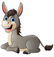 cartoon donkey smile and happy vector image vector image
