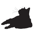 Cat Silhouette vector image vector image