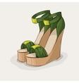 Luxury green sandals vector image vector image