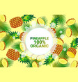 pineapple fruit colorful circle copy space organic vector image