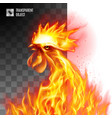 rooster head fiery on transparent background vector image vector image
