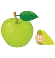 snail on apple vector image