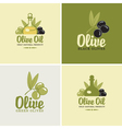 olives and oil vector image