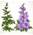 Green grass and purple flower vector image