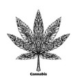 cannabis leaf decorated with original modern vector image vector image