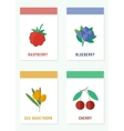 Cards with fresh berries vector image