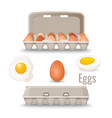 eggs in shell inside cardboard container and vector image vector image